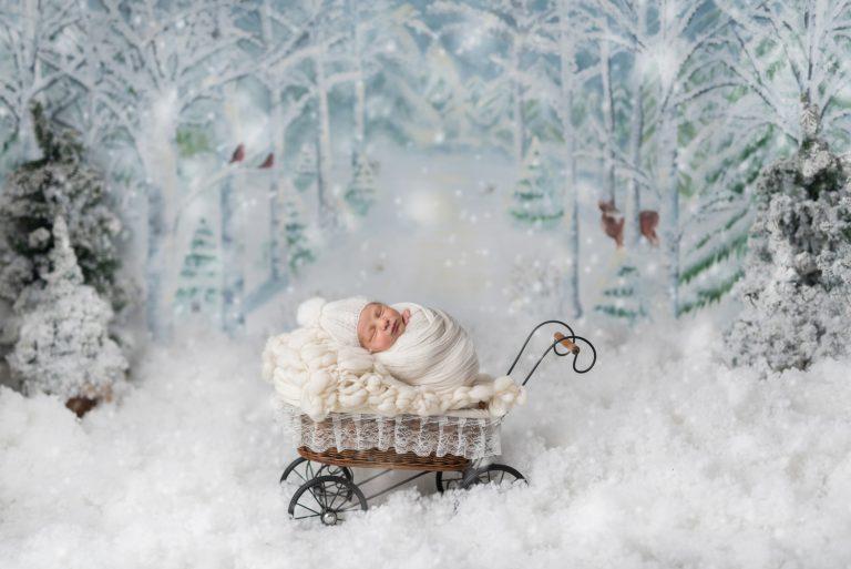 2019-12-11-matteo-costin-8-zile-58
